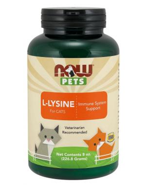 L Lysine for para Gatos em Pó 226g NOW Pets