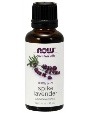 Óleo Essencial Spike Lavender 30ml NOW Foods